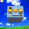 3-D-250巡逻车电池 游览车电池 观光车电池