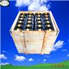 6VBS600 叉车蓄电池 叉车电瓶 叉车电池
