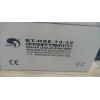赛特蓄电池BT-HSE-65-12