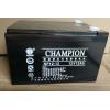 冠军电池NP12-12 铅酸免维护电池