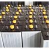 开普KEF10E叉车蓄电池48V420AH 电池组24-6DB420