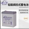 理士电池 DJ100(2V100AH)阀控密封式铅酸蓄电池